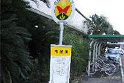 isshibasu