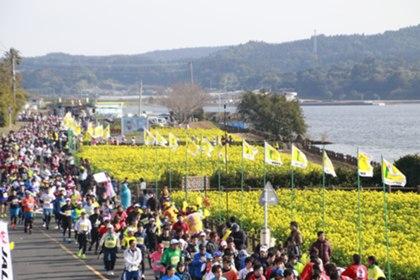 エントリー 菜の花 マラソン 2020